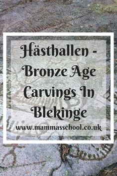 Discover the Bronze Age rock carvings at Hästhallen and step back in time. Enjoy the beautiful woodland surroundings the carvings are set in. Running The Gauntlet, Nature Reserve, Bronze Age, Outdoor Play, Low Key, Historical Sites, Family Travel, Planting Flowers, The Past