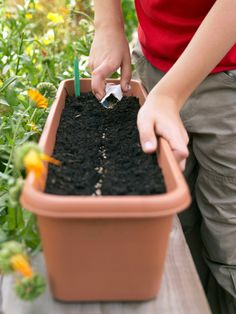 August Gardening To-Do List via @hgtv #garden #nature