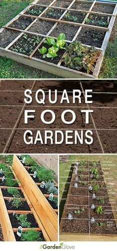 Easy Steps To Square Foot Garden Success • How-to's, examples & projects to get you started! #garden