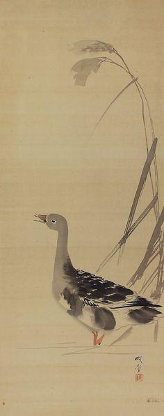 Wild Goose in Reeds. Morohoshi Seisho(1870-?) Hanging Scroll kakejiku.