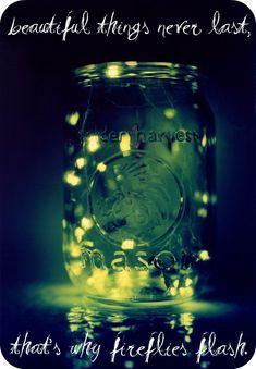 Fireflies - Ron Pope