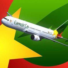CAMEROUN :: Camair-Co : Un Boeing de retour d'Afrique du sud ... - camer.be