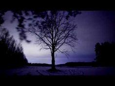 ▶ Kapela Ze Wsi Warszawa - Step Owy / Warsaw Village Band - Step This and That - YouTube