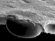 NanoArt - Atomic / Molecular Sculptures and Landscapes - Interalia Magazine Science Art, Science And Technology, Structure Of Matter, Natural Structures, Fine Art Paper, New Art, Digital Prints, Fine Art Prints, Sculptures
