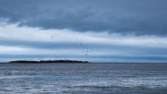 Chipster63 Photography: To Hilbre At Dawn