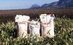 #PegoNatura S.L apuesta por el I+D+I a través del #proyecto de recuperación de las #variedades #autóctonas de #arroz de la #Marjal de #Pego #Oliva: #Bombón y #Pegonil — en Pego, Alicante. http://www.pegonatura.es/