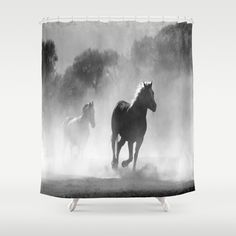 Horses  Shower Curtain by Gracy Dreamscape - $68.00