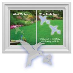 Amazoncom Maple Leaf Window Decal And Deterrent For Birds Patio - Bird window stickers amazon