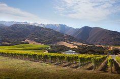 California's Overlooked Treasure: Santa Lucia Highlands