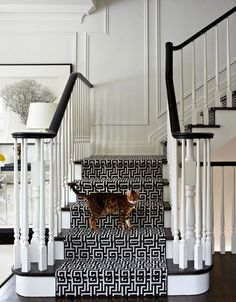 source: Virginia Macdonald Photography Chic foyer staircase with glossy black staircase handrail, glossy black stair treads, glossy white wood balusters, white 7 black Greek key fretwork stair runner and decorative wall moldings. - Futura Home Decorating Black Staircase, Foyer Staircase, Staircase Handrail, Staircases, Staircase Runner, Stair Treads, Black Railing, Carpet Runner On Stairs, Staircase Molding