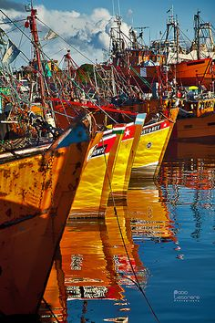 Puerto de pescadores, Mar del Plata,provincia de Buenos Aires, Argentina Version Voyages, www.versionvoyages.fr