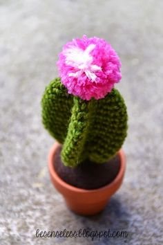 Grab this Super Cute FREE Cactus Amigurumi Crochet Pattern. Browse more Cactus Patterns and other Plants Crochet Gratis, Crochet Amigurumi, Amigurumi Patterns, Crochet Toys, Cat Amigurumi, Knitted Flowers, Crochet Flower Patterns, Crochet Cactus Free Pattern, Borboleta Crochet