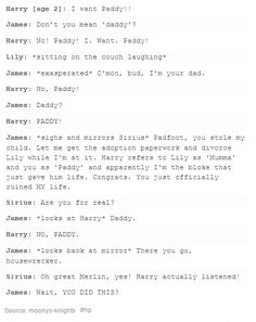 The Marauders and baby Harry