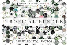 98% OFF | Tropical Bundle | 170 IN 1 by Floral Deco on @creativemarket