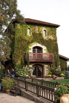 It's a beautiful world — V. Sattui Winery in Napa Valley, California - USA...