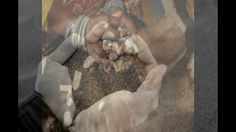 love spells 0027717140486 in Illinois,Indiana,California,Colorado Black Magic Love Spells, Lost Love Spells, Powerful Love Spells, Connecticut, Arkansas, Illinois, Indiana, Australia Capital, Colorado