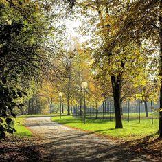I love walking on this part of the Olympic Park in Munich.  Adoooro andar por essa parte do Parque Olímpico de Munique.  #olympiapark #park #walk #munich #munique #muenchen #minga #travel #traveler #travelblog #travelgram #wanderlust #travelingourplanet #instapic #instatravel #nature #natureza #viagem #viajar #blogdeviagem #TLPicks #germany #alemanha #europe #europa by packingmysuitcase