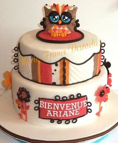 owl baby shower cake...would need to use different colors...