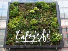 Vertikaler Garten Friedrichstrasse Berlin Galeries Lafayette von Patrick Blanc