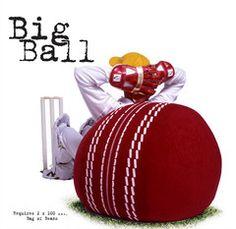 cricket ball bean bag