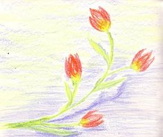 10 minute drawing with Stockmar wax colors using only prime colors Crayon Drawings, Chalk Drawings, Crayon Art, Wax Crayons, Sadie, Tulips, Crafts For Kids, Texture, Activities