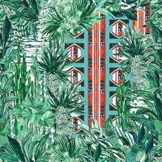 isla-and-eden_PierreFrey_Papagayo.jpg (600×600)