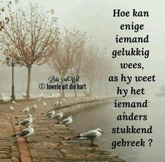 Dont Be Rude, Afrikaanse Quotes, Nighty Night, Prayer Quotes, Deep Thoughts, Inspirational Quotes, Face Book, Interesting Stuff, Tart