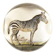 John Derian Company Inc — Zebra
