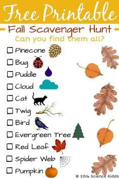 Autumn is the perfect time to get outside with the kids to do a fall nature scavenger hunt. Grab a clipboard and a pencil and get searching! Designed for preschool through third grade. Fall Activities for Kids Fall Preschool Activities, Preschool Crafts, Toddler Activities, Preschool Theme Fall, Kids Educational Crafts, Holiday Activities For Kids, Science Crafts, Fun Games For Kids, Preschool Printables