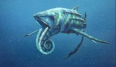 "Prehistoric Sea Monster  :Helicoprion These sharks grew to be about 15 feet long,with a lower jaw that was made of a ""tooth whorl"". A cross between a circular saw and a shark, and when you mix apex predators with power tools, the world quakes in fear.Helicoprion's teeth were serrated, implying that they were definitely carnivores.Google ""Helicoprion"""