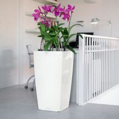 Cubico 40 Planter  $219.95; Cubico 30 $199.95 Made in Germany by LECHUZA; select from 2 finishes, 5 colors (White, Scarlet Red, Black, Charcoal, and Espresso); planter is shatterproof, UV-resistant and frost proof; and the sub-irrigation system manages regular watering (i.e. you fill the water reservoir, and the irrigation system will water your plants based on the reading from the water level indicator. . . depending on the plant's watering needs, refill in roughly 12 weeks)