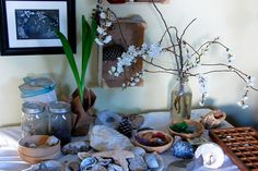 spring nature table: I like the big pile of interesting stuff, the sorting tray, the mounted box, the drooping flowers