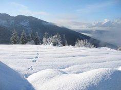 Val di Non #inverno #neve #trentino