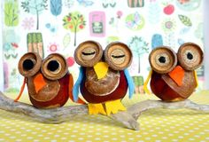 Chestnut Owls