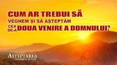 #film #Evanghelie #Împărăţia #creștinism #Iisus #biserică #pastorului #rugaciuni #Creatorule #Duhul_Sfânt #filme_crestine_ortodoxe Whatsapp Group, Movies