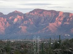 Catalina Ridge Oro Valley Arizona  Find Home For Sale In Catalina Ridge Oro Valley Catalina Ridge is located in the center of Oro Valley AZ and close to shopping, dining, and entertainment. Catalina Ridge homes are semi-custom one story…