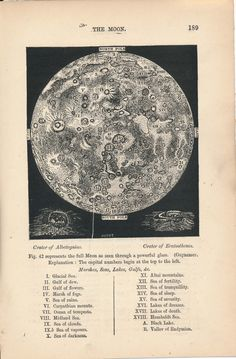 vintage astronomy print, the Moon Earth And Space, Vintage Prints, Vintage Posters, Collage Mural, Celestial Map, Space And Astronomy, Astronomy Facts, Astronomy Pictures, Laura Lee