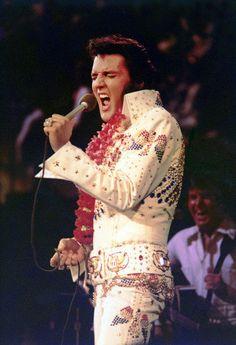 The King Of Rock & Roll Elvis Presley                                                                                                                                                      More