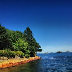 1 Mile hike? Sure, but only in summer   Mackworth Island Trail in Falmouth, ME