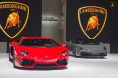 Lamborghini Aventador and Lamborghini Gallardo