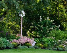 Landscaping Ideas Shady Areas Design, Pictures, Remodel, Decor and Ideas - page 8