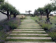 HAM visits: Areias do Seixo, Portugal [©JoHam]