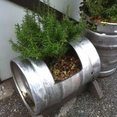 Beer Keg Planter - Saw these at Arrowhead Village in CA