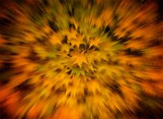 ZOOM BURST: How to Take Stunning Zoom Burst Photos  Zoom blur photo of autumn leaves