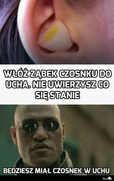 Really Funny Pictures, Beautiful Pictures, Polish Memes, Weekend Humor, Some Quotes, Wtf Funny, Creepypasta, Haha, Harry Potter