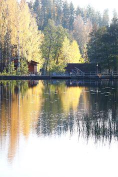 Viimeisiä syksyn loiston hetkiä. Kuvausreissulla lokakuun alussa kauniissa Kymenlaakson maisemissa! River, Outdoor, Outdoors, Outdoor Games, The Great Outdoors, Rivers
