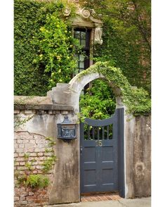 """hueandeyephotography: """"Arched Doorway, Charleston, SC © Doug Hickok All Right. hueandeyephotography: """"Arched Doorway, Charleston, SC © Doug Hickok All Rights Reserved hue and eye the peacock's hiccu Garden Gates And Fencing, Fence Gate, Fences, Garden Entrance, Garden Doors, Front Gates, Entry Gates, Charleston Gardens, Charleston Sc"""