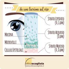 http://www.otticascagliola.it/il-blog/15-lacrime