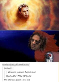 Hahaha! | The Winter Soldier and The Lion King | Laughed way too hard not to pin this:)