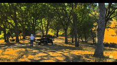 CHECK THIS OUT! The Amazing Pleasant Valley Ranch // Vacaville, CA